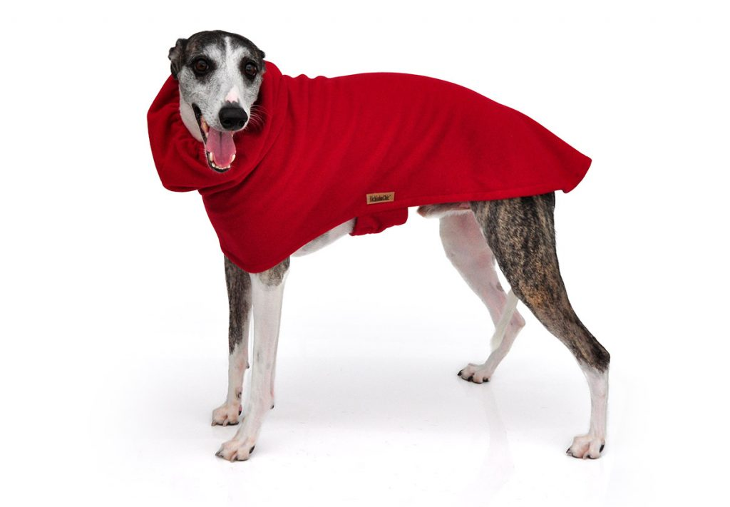 ROUPA PARA WHIPPET